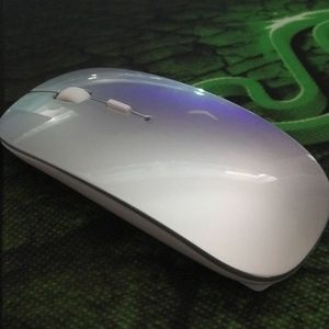 Other - Mouse